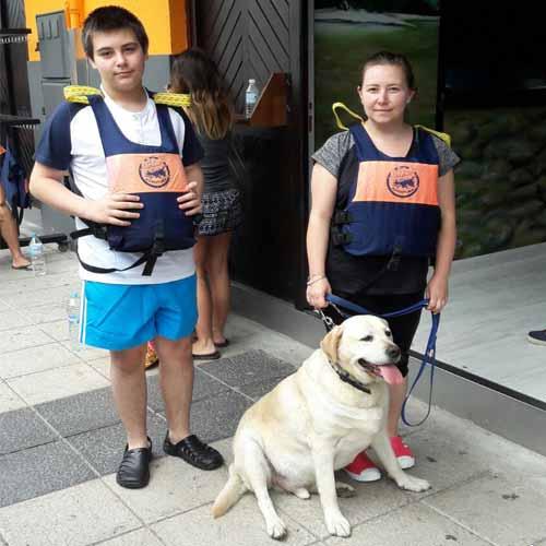 Bajar el perro con canes