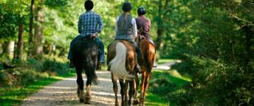 Rutas a caballo por Asturias con Aipol Aventura